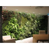 Wholesale Eco-friendly Vivid Plastic Hanging Plants Wall Garden with Synthetic Plants Arrangement from china suppliers