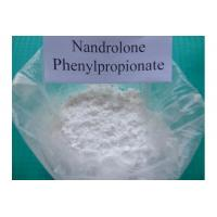 Wholesale 99% Assay Nandrolone Phenylpropionate , CAS 62-90-8 NPP Durabolin Steroid Powder from china suppliers