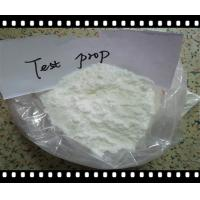 Buy cheap Pharmaceutical GMP Grade Testosterone Phenylpropionate CAS 1255-49-8 from Wholesalers