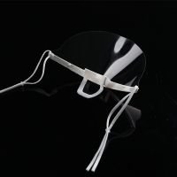 Wholesale Food Processing 14*5.5CM Transparent Plastic Mouth Mask from china suppliers