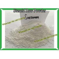 Wholesale Injectable Steroid Testosterone Sustanon 250 / Sust 250 Muti Ester Raw Powder For Bodybuilding from china suppliers