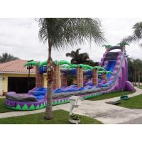 Wholesale Purple Paradise Inflatable Water Slides With Pool / Adult Inflatable Wet Slide from china suppliers