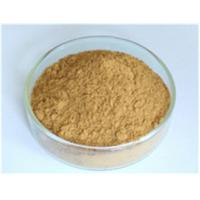China Astragalus Root Extract protect liver Manufacturer on sale
