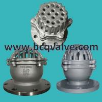 Wholesale DIN Lift Type Foot Check Valve for Water Pump BOTTOM VALVE from china suppliers