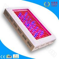 Wholesale 200W LED Grow Lighting (CDL-G200W) from china suppliers