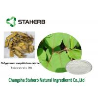 Wholesale Resveratrol Antioxidant dietary supplement Polygonum cuspidatum extract from china suppliers