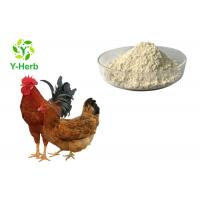 Wholesale Feed Grade Thermostable Phytase Powder Enzyme For Poultry Feed Livestock Additive from china suppliers