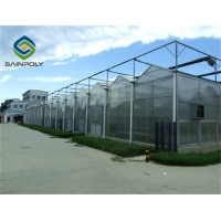 China High transmittance 10.8m Polycarbonate Greenhouse  For  Agriculture Farm on sale