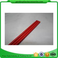 Wholesale PE Coated Metal Garden Plant Stakes 8mm Diameter , 75cm Length Metal Garden Stakes  Lengt  Dia:11mm  Dia:11mm from china suppliers