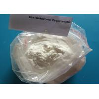 Wholesale Weight Loss Injection White Raw Steroid Hormone Powder Testosterone Propionate from china suppliers