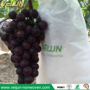 China Nonwoven grape bag fruit bag non-woven fabric nonwoven banana bag fruit protection bag on sale