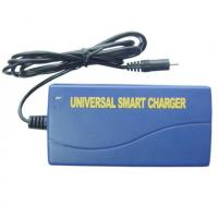 Wholesale Universal Smart NIMH NICD Battery Charger , DC 12 Volt For Power Tool from china suppliers