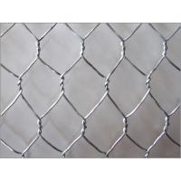 China PVC Hexagonal Wire Netting - 25mm from Homebase on sale