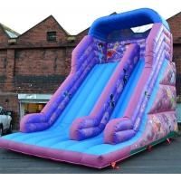 Wholesale 30ft Princess Inflatable Dry Slide , Faires Slide Purple Giant Bouncy Slide from china suppliers