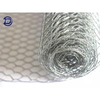 China Hexagonal Wire Netting for sale