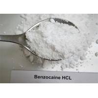 Local Anesthetic Steroids Raw Powder , Pure Benzocaine HCL Powder CAS 23239-88-5 for sale