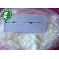Wholesale Muscle Growth Steroids Powder Nandrolone Propionate for Bodybuilding from china suppliers
