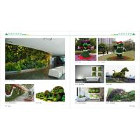 Wholesale high quality Artificial green wall plants art plants wall plastic plant green wall decorat from china suppliers