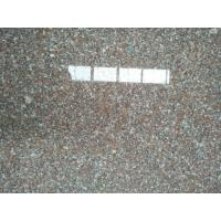 Wholesale NEW G664 Granite Slab Tiles High Quality Granite Stone Slabs Chinese Granite from china suppliers