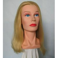 Wholesale training heads Mannequin head,Model head, from china suppliers