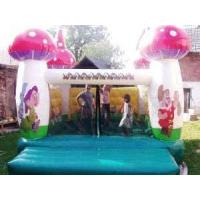 China Inflatable Mushroom Bouncer (CB-001) for sale