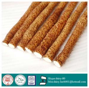 China GMP 100% Natural Dioscorease rhizome extract on sale