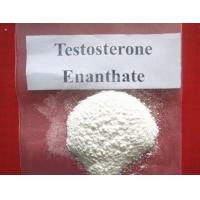 Wholesale estosterone Enanthate Raw Testosterone Powder from china suppliers