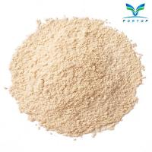China Mushroom Powder (Agaricus Bisporus) on sale