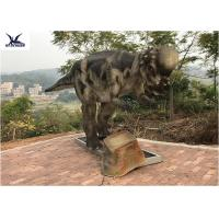 Wholesale Pachycephalosaur Robotic Dinosaur Garden Ornaments Soft And Smooth Surface Treatment from china suppliers