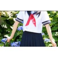 Wholesale 2012 Fashionable Cute School Uniform /Primary School Uniform /Compare 2012 Fashionable Cute School Uniform from china suppliers