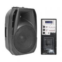 China 15 inches full range plastic mold PA speaker box, 300W power, 8Ω nominal impedance on sale
