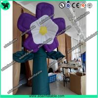 Wholesale Spring Holiday Event Party Decoration Inflatable Flower, Club Decoration Inflatable from china suppliers
