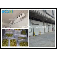 China Fresh Jujube Preservation Frozen Warehouse Storage / Large Cold Storage 24 Hrs for sale
