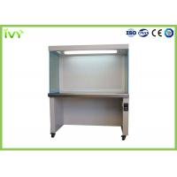Movable Laminar Flow Workbench Large Working Capacity For Clean Room for sale