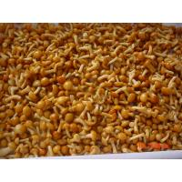 IQF New Crop  Frozen Fruits And Vegetables Forest Nameko Mushroom Whole Part