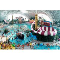 Wholesale Space Bowl Fiberglass Water Slides for Adventure Amusement Waterpark, Water Splash Rides from china suppliers