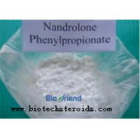 Wholesale White Nandrolone Decanoate DECA Durabolin Steroid / DECA Durabolin Powder CAS 360-70-3 from china suppliers