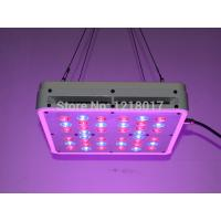 China Apollo led grow lights NEWest cheap 600w led grow lights for sale on sale