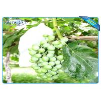 Wholesale OEM Disposable Nonwoven Fruit Protection Bag For Grape Size 20 cm 22cm from china suppliers