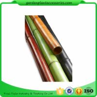 Wholesale Natural Bamboo Garden Stakes /  Bamboo Garden Canes 6ft For Plant Support from china suppliers