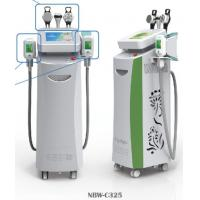 China Freezing Fat Cell Slimming Machine / 5 Pcs Cold Fat Dissolving Handle on sale