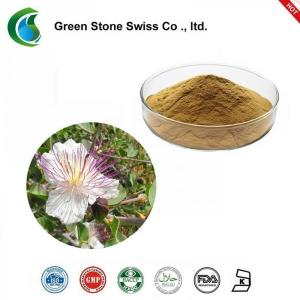 Wholesale 10/1 HPLC Caper Plant Herbal Extract Capparis Spinosa L from china suppliers