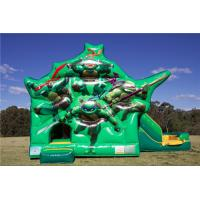 Wholesale Commercial Teenage Mutant Ninja Turtles Dual Slide Combo Jumping Castle For Party Custom Size from china suppliers