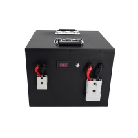 Wholesale Panasonic 24V 100Ah 2400Wh Lithium Battery Pack from china suppliers
