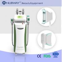 Wholesale Big handle size 3d cryolipolysis equipment cryolipolysis cool shaping machine from china suppliers
