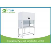 Vertical Laminar Flow Cabinet Hospital Lab Equipment With Side Glass Window for sale