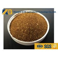 Wholesale Low Salt Cattle Feed Additives / High Protein Cattle Feed 20 - 30 Saturated from china suppliers