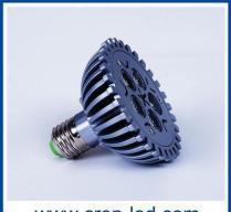 China LED Par 30/Par 38 lamp on sale