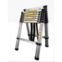 China Combination ladder on sale