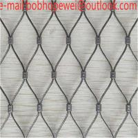 China wire rope net/stainless steel cable net/rope fence netting/rope mesh netting/steel cable netting/wire rope end fitting on sale